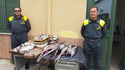 Sequestrato pesce non idoneo al consumo