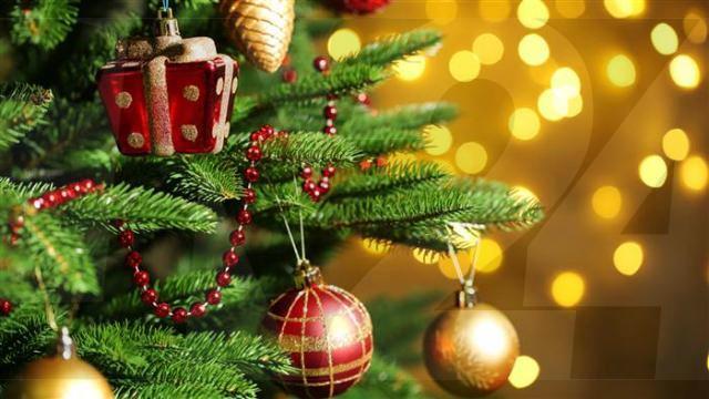 Decoro urbano, Federimprese accende l'albero di Natale di Rossano