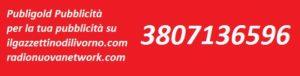 Toscana Notizie  Livono da Lunedi 23 saranno ben 504  parcheggi a pagamento sulla zona mare