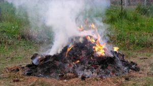 Brucia rifiuti nel suo giardino, denunciato 70enne di Villa Castelli